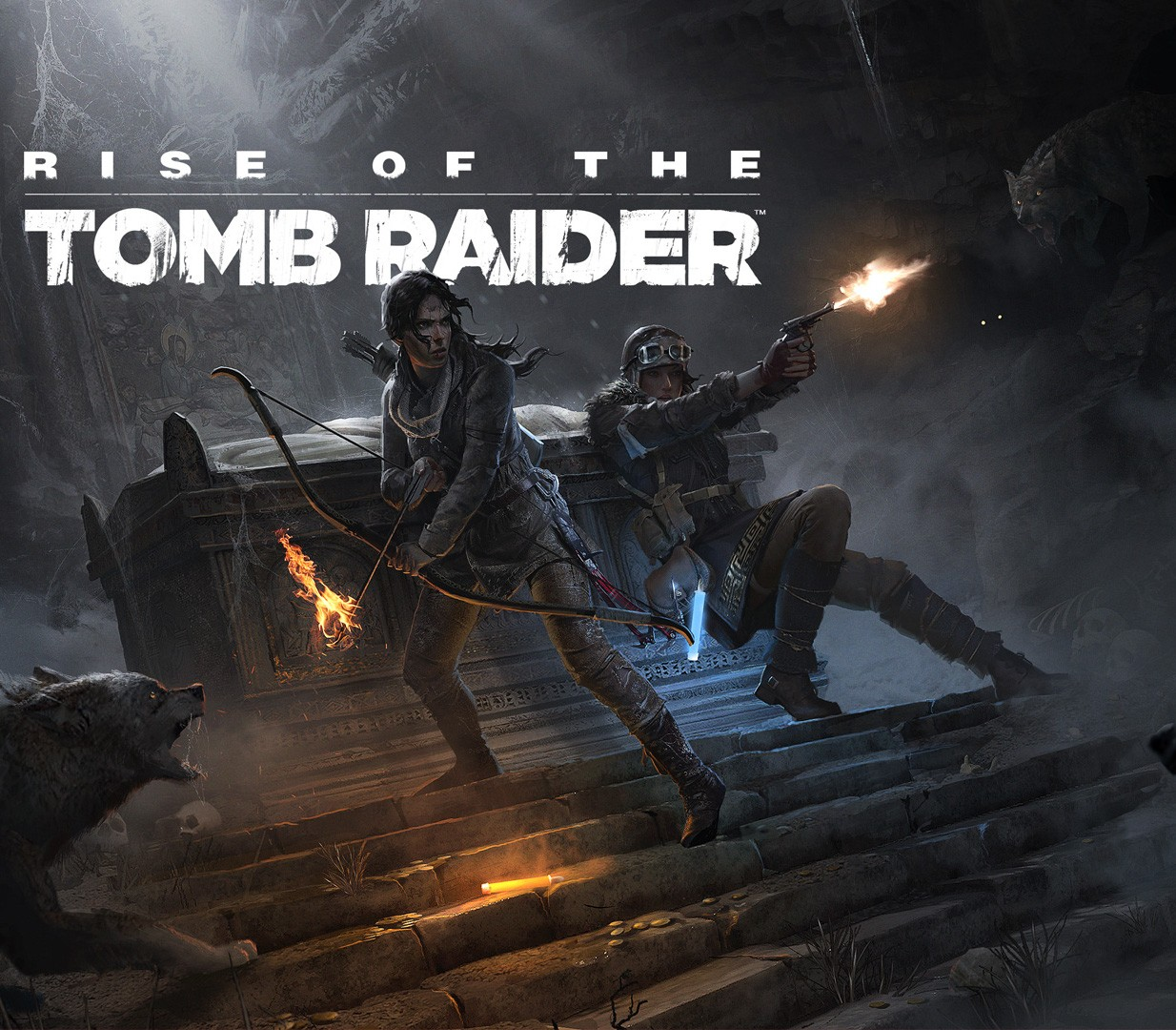 Rise Of The Tomb Raider 20 Year Celebration Edition Na Ps4 Cd Key