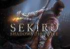 Sekiro: Shadows Die Twice Steam Altergift