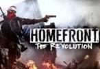 Homefront: The Revolution US Steam CD Key
