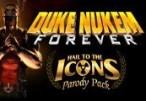 Duke Nukem Forever: Hail to the Icons Parody Pack DLC Steam CD Key