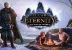 Pillars of Eternity: The White March Expansion Pass Clé Steam