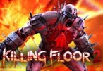 Killing Floor 2 Steam CD Key