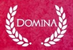 Domina Steam CD Key