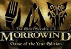 The Elder Scrolls III Morrowind GOTY Clé Steam