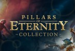Pillars of Eternity Collection Bundle (Standard) Steam CD Key