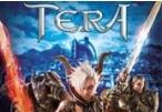 TERA Winterwing Starter Pack Activation CD Key