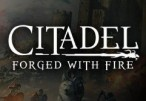 Citadel: Forged with Fire Steam CD Key