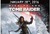 Rise of the Tomb Raider RU VPN Required Steam CD Key