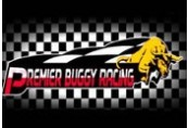 Premier Buggy Racing Tour Steam CD Key