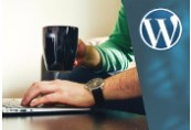 WordPress: Create Stunning Wordpress Websites for Business ShopHacker.com Code