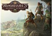 Avernum 3: Ruined World Steam CD Key