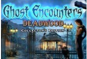 Ghost Encounters: Deadwood - Collector's Edition Steam CD Key