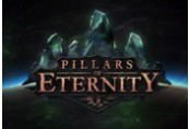 Pillars of Eternity Steam CD Key