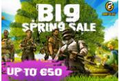 Big Spring Sale Coupon