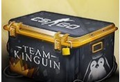 Team Kinguin CS:GO Skin Case