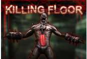 Killing Floor PL/CZ/SK/HU Steam CD Key