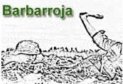Barbarroja Steam CD Key