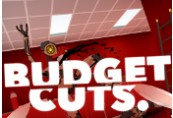 Budget Cuts Steam CD Key