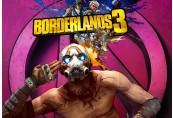 Borderlands 3 EU Steam CD Key