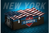 CS:GO Esports New York Case