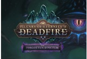 Pillars of Eternity II: Deadfire - The Forgotten Sanctum DLC Steam CD Key