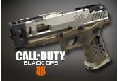 Call of Duty: Black Ops 4 - Divinity Weapon DLC Clé PS4/XBOX One/PC