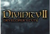 Divinity II: Developer's Cut Steam CD Key