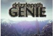 Drizzlepath: Genie Steam CD Key
