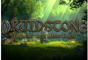 Druidstone: The Secret of the Menhir Forest Steam CD Key
