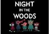 Night in the Woods Steam Gift
