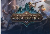 Pillars of Eternity II: Deadfire RU VPN Required Steam CD Key