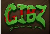 GIBZ Steam CD Key