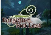 Forgotten, Not Lost Steam CD Key