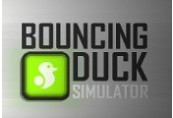 Bouncing Duck Simulator Steam CD Key