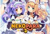 NEKOPARA Vol. 3 Steam Altergift