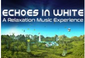 Echoes in White Steam CD Key