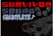 Survivor Squad: Gauntlets Steam CD Key