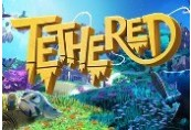 Tethered Steam CD Key