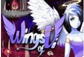 Wings of Vi Steam CD Key