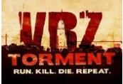 VRZ: Torment Steam CD Key