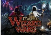 Magicka: Wizard Wars - Paradox Playtpus Robe DLC Steam CD Key