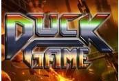 Duck Game EU Steam Gift