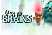 Tiny Brains Steam CD Key