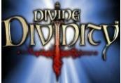 Divine Divinity Steam Gift
