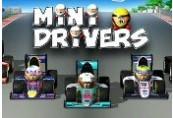 MiniDrivers Steam CD Key