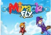 Miracle Fly Steam CD Key