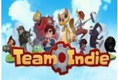 Team Indie Steam Gift