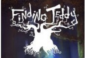 Finding Teddy Steam Gift