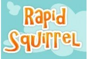 Rapid Squirrel Steam CD Key