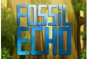 Fossil Echo Steam Gift